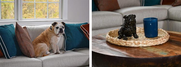Dog Friendly Sofa - Dog Safe Fabric - Dog Accessories - Dog Statue