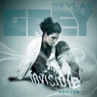 Skylar Grey Invisible Fred Falke Remix