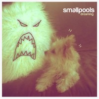 Smallpools Dreaming