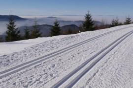 #veckanshållbara 17 – skidåkare, fråga efter flourfri valla