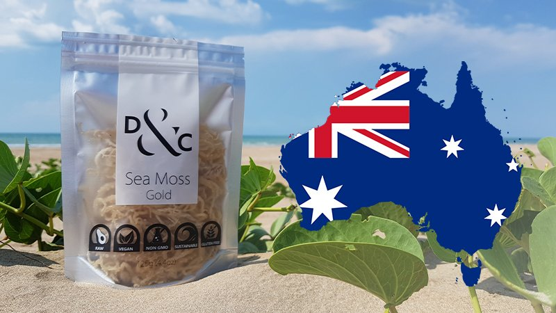 Buying-Sea-Moss-in-the-Australia-Sea-Moss-Gold. Detox & Cure Sea Moss Gold 125g bag on the golden sands of a sunny beach with a stylized map of Australia showing the Australian Flag within the borders of the country