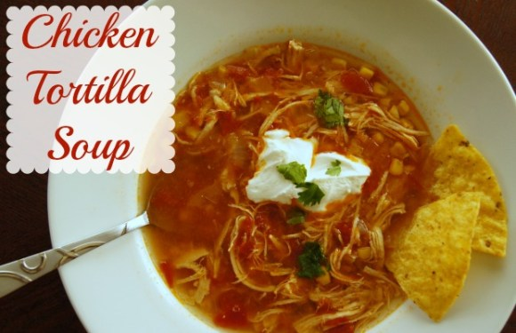 Easy Chicken Tortilla Slow Cooker Soup