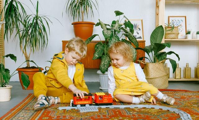 How to Get Young Children Interested in Houseplants