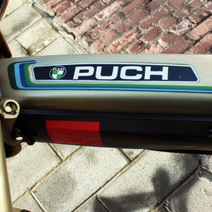 Gold Puch Maxi (SOLD)