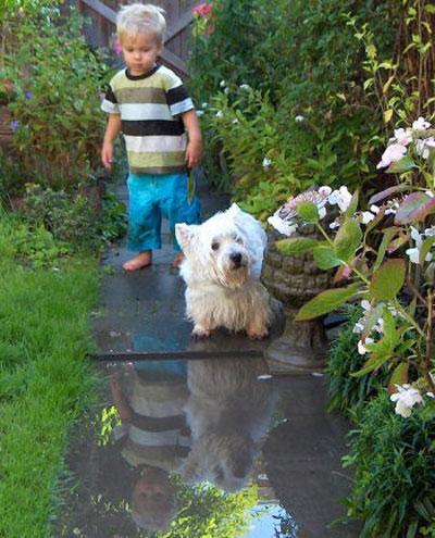 Гулять по воде вдвоем - рассказ в картинках (5 фотографий ...