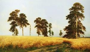 Описание картины И. И. Шишкина «Рожь»