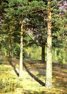 Описание картины И. И. Шишкина «Сосны, освещенные солнцем»