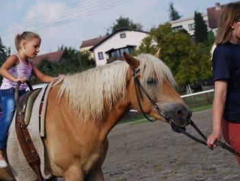 Vožení na koni (rekondiční jízda)