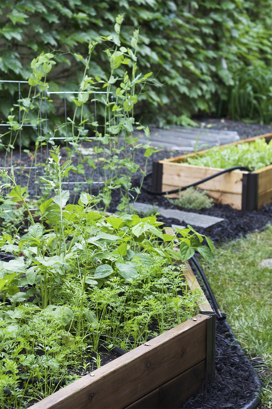 Gardening Basics : Installing a Garden Bed - Deuce Cities ... on Gardening  id=27035