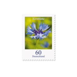 Briefmarke Deutschland kornblume