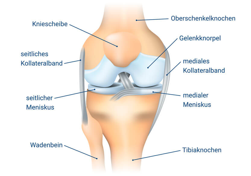 knieschmerzen ursachen symptome