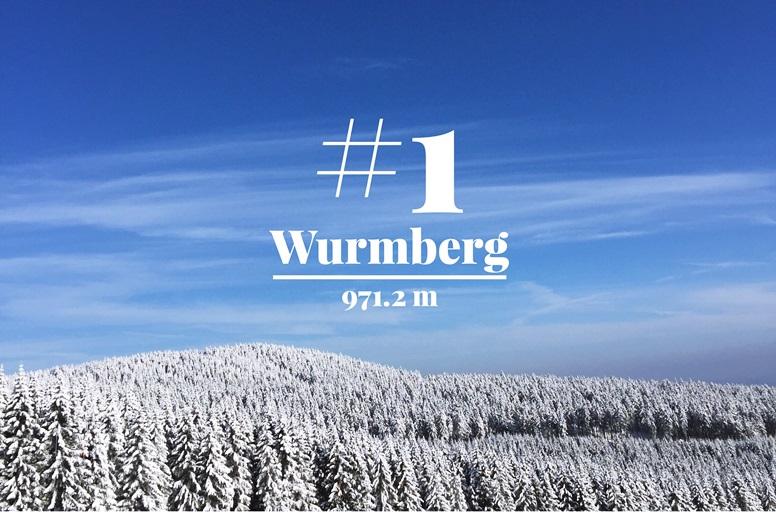 Blick vom Wurmberg auf die verschneiten Wälder rings herum