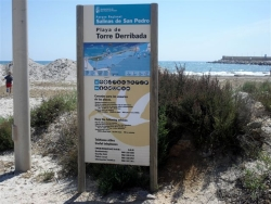 playa_de_torre_derribada