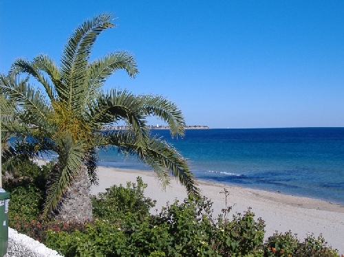 playa_mil_palmeras-01