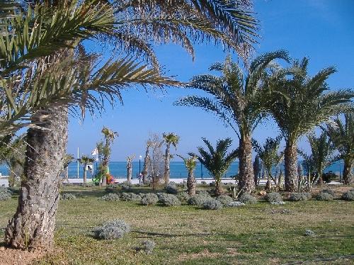 promenade_playa_flamenca-05