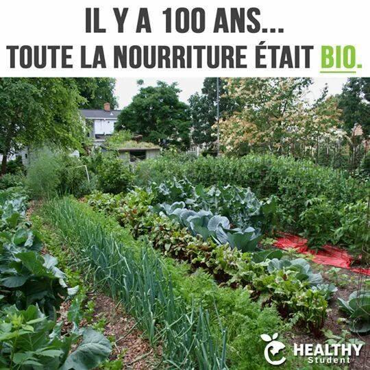 Alimentation saine : il y a 100 ans, toute la nourriture était bio