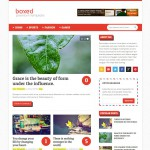 boxed blogger template