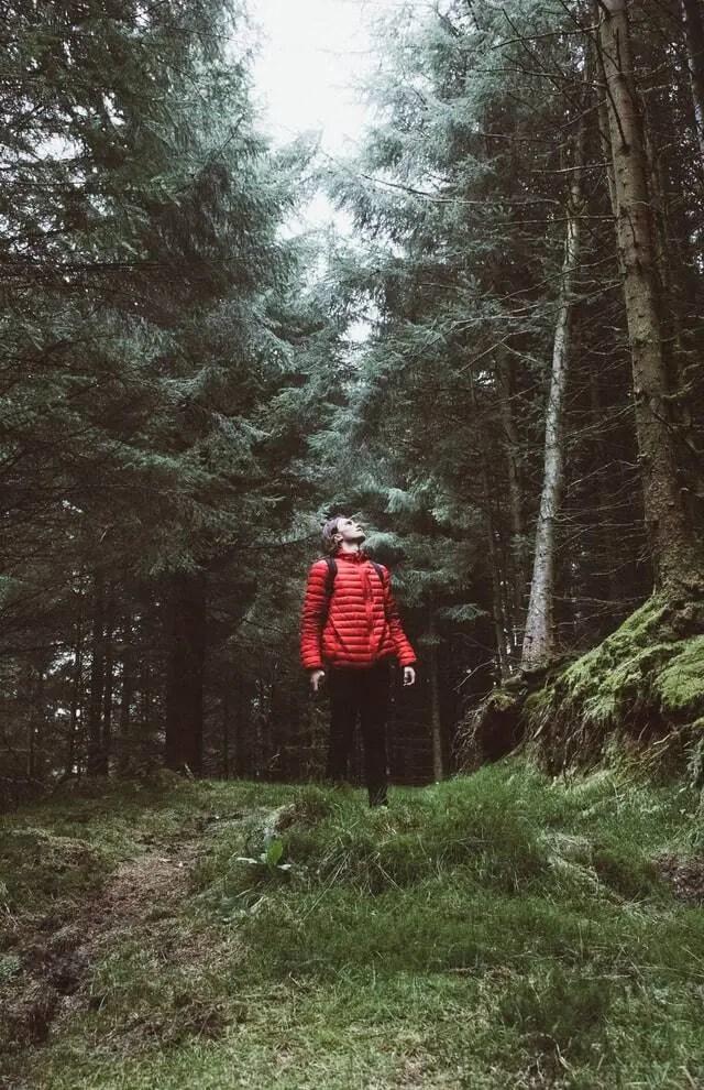 9 creatieve voordelen van tijd in de natuur doorbrengen