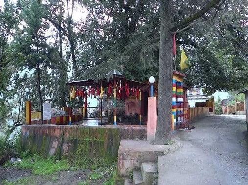 Kalpavriksha in joshimath
