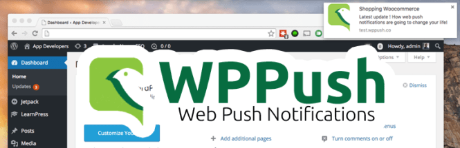 how-to-send-push-notifications-to-browser-using-word-press-plugin-3