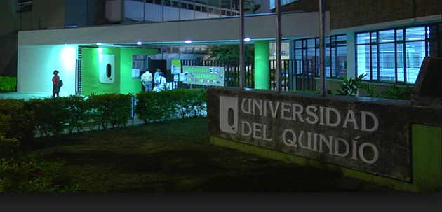 Universidad Del Quindío, Vision and Subjects