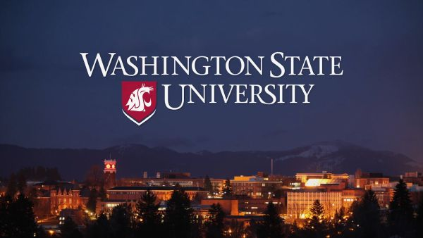 Washington State University Ranking
