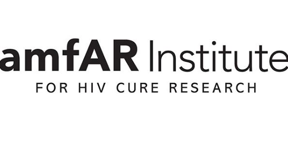 amfAR Foundation HIV/AIDS Public Policy Internship and Fellowship Program