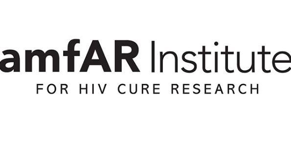 amfAR Foundation HIV/AIDS Public Policy Internship and Fellowship Program
