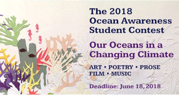 Ocean Awareness Student Contest