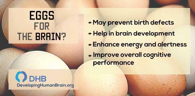 brain food eggs