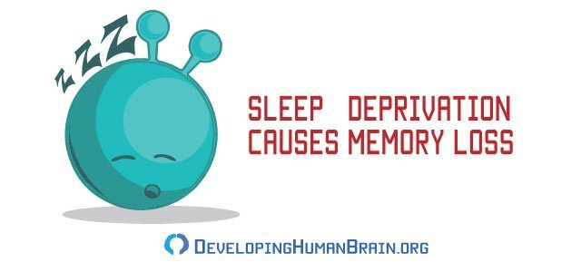 sleep and memory
