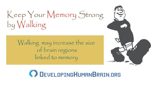 ways to improve memory