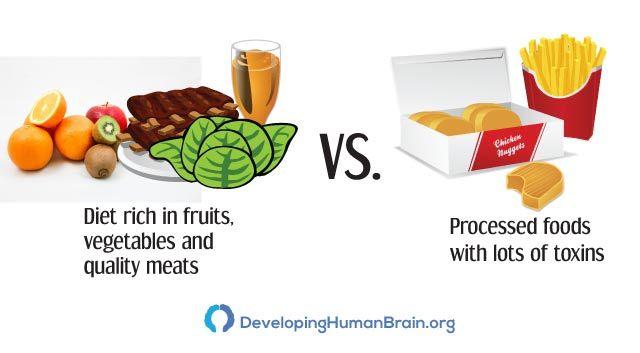 diet with brain vitamins
