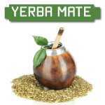 yerba mate brain benefits