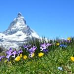 Les charmes d'un voyage en Suisse