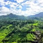 Séjour au Sri Lanka: 3 sites d'intérêt touristiques à visiter absolument