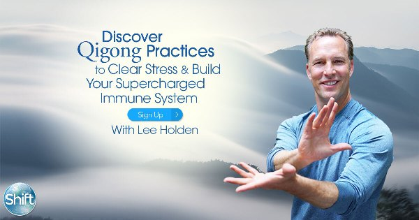Qigong Immune System