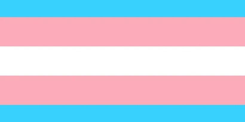 Trans vlajka