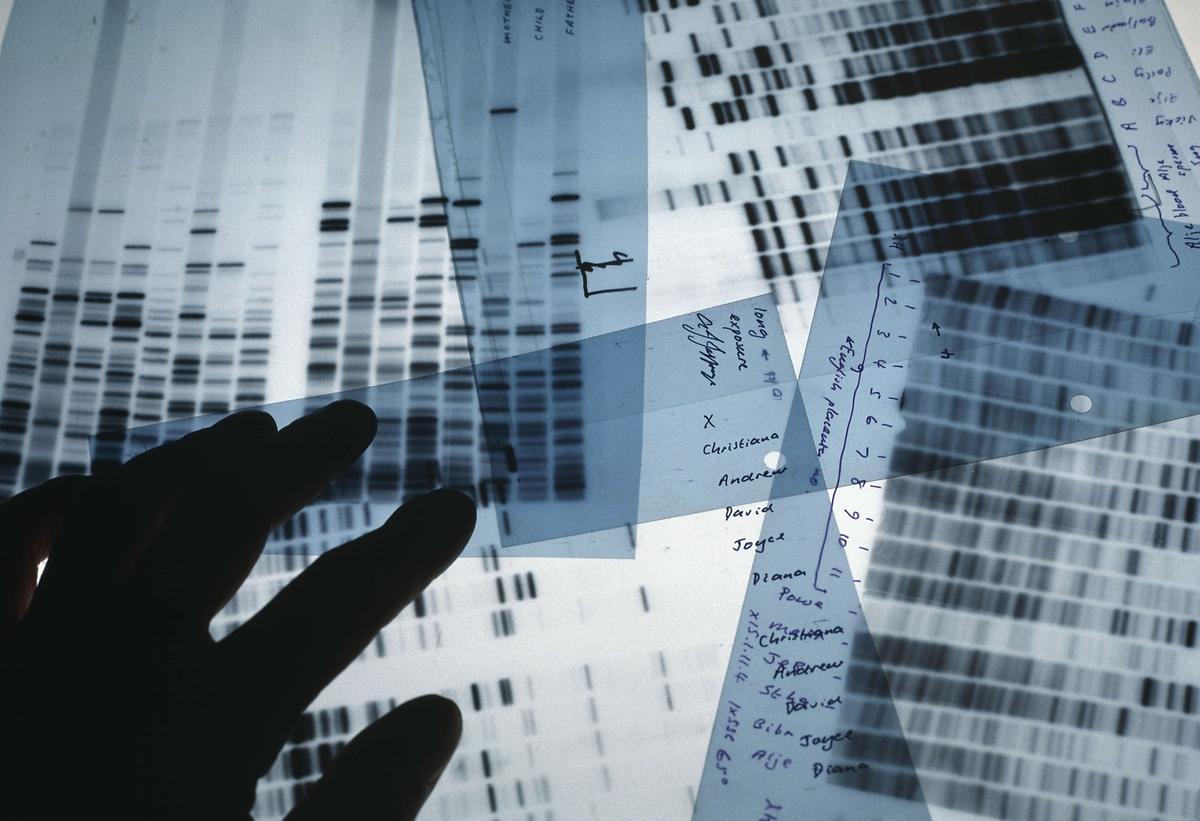 Aluno é expulso por conta de seu DNA
