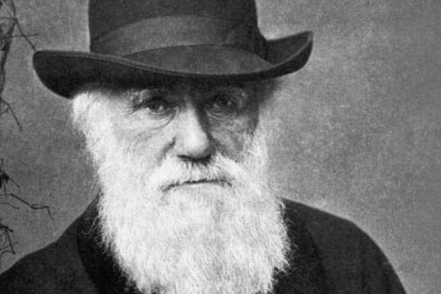 Barbudos do mundo, uni-vos: barba pode funcionar como antibiótico (com algumas reflexões sobre a germofobia)
