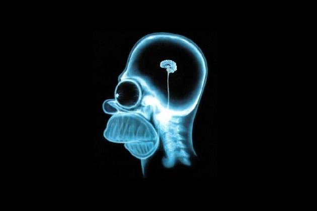 Uso de maconha na adolescência pode retardar desenvolvimento cerebral