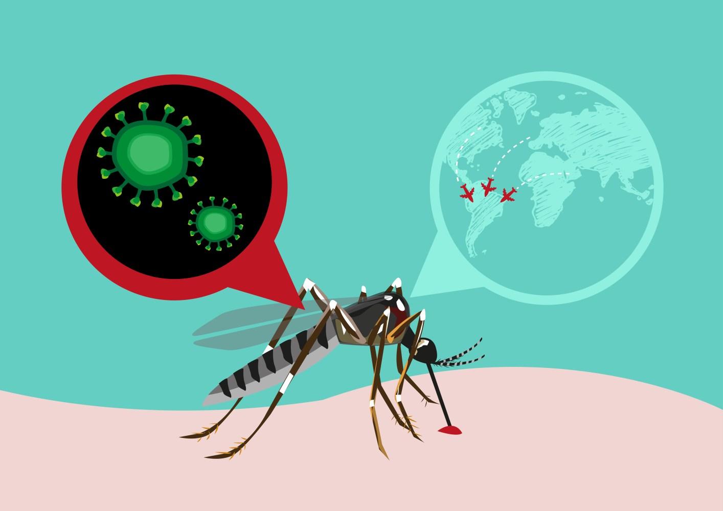 Talvez o problema não seja só o Zika vírus