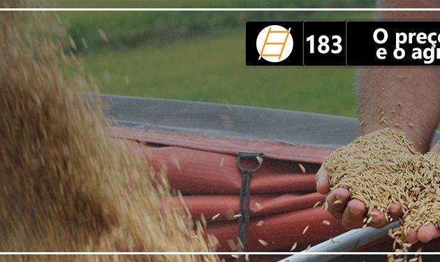 Chute 183 – O preço do arroz e o agronegócio