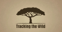 Meet tracking the Wild: the social software the use of crowdsourcing to assist Africa's flora and fauna