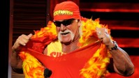 WWE Says Hulk Hogan To function Grand Marshal For Susan G. Komen D.C. Race For The remedy