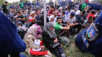 here is how you can lend a hand The Refugees Flooding Into Europe