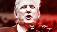 Trump's Muslim Ban Outcrazies The web, Blows Up Twitter