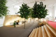 This administrative center brought A Mini woodland Indoors