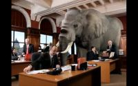 Elephants in the Room: advert blocking off, Viewability And Transparency