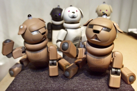 Sony is resurrecting its robots for a full financial recovery
